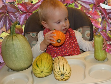 kay gourds